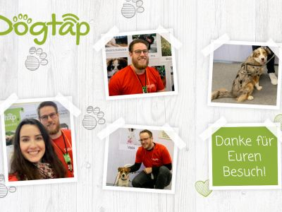 Bilder Collage mit Fotos der Doglive Messe Münster