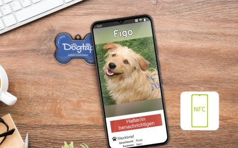 Smartphone with Dogtap