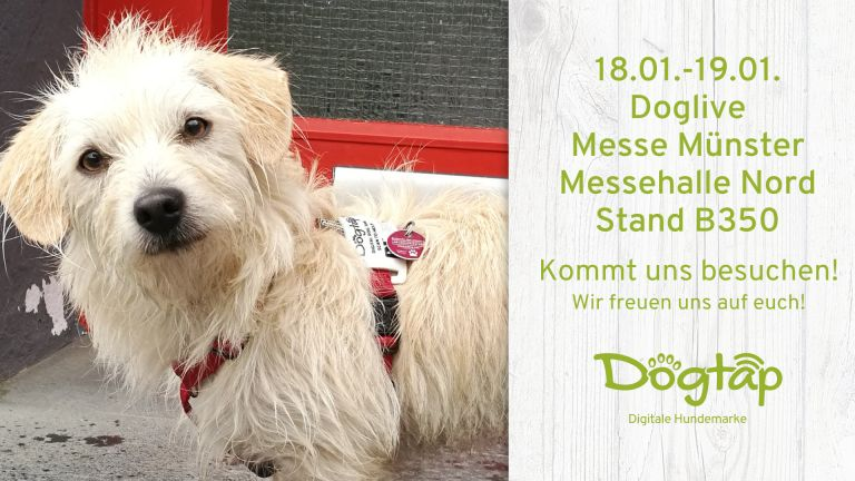 Visit us at Doglive in Münster!